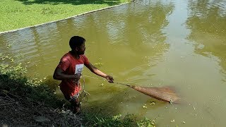 Net Fishing | Catching Lot of Big Fish With A Cast Net | net fishing in the village (Part-22)