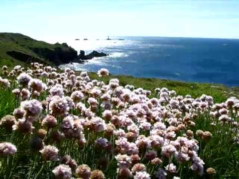MY TRIP TO CORNWALL - UK | 2009