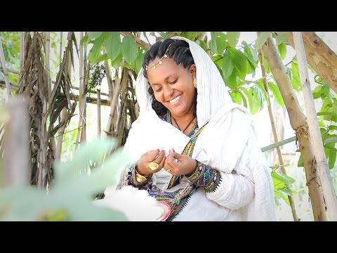 Mearg Tsegay - Hoye Hoye   New Ethiopian Tigrigna Music (Official Video)