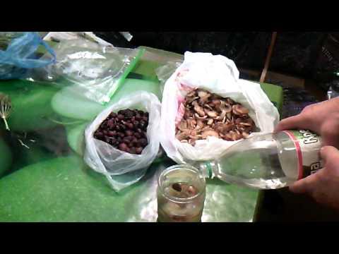 Настойка самогона. Мед, шиповник и сушеные яблоки.