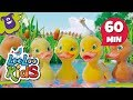 Five Little Ducks - The Greatest Songs for Children | LooLoo Kids