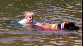 Собаки-водолазы спасают людей на воде (условно)