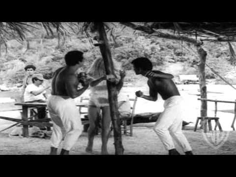 Night of the Iguana - Trailer