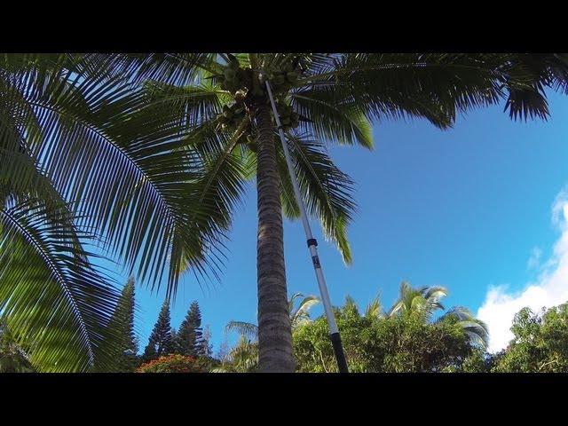 Life in Kauai Hawaii, Yumi & Steve - Kauai Life 001