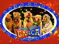 CIRCO HERMANOS GASCA, HERMOSOS ANIMALES,