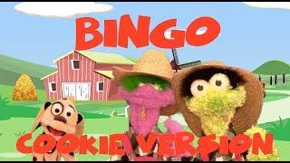 BINGO Dog Song COOKIE Version Nursery Rhymes For Kids
