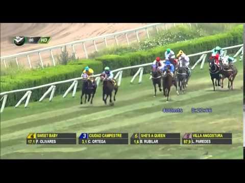 Vidéo de la course PMU PREMIO DUCADA