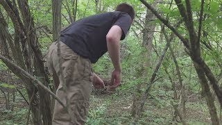 Crawling through a forest to find my dad's wrecked RC plane