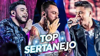 Top Sertanejo 2019 Mais Tocados - As Melhores do Sertanejo Universitário 2019 (Lançamentos)