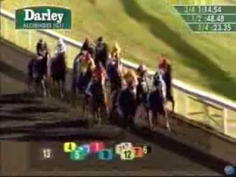 2013 Darley Alcibiades Stakes - My Conquestadory