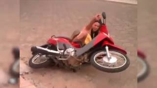Videos engraçados do whatsapp - Tombos de moto 2016