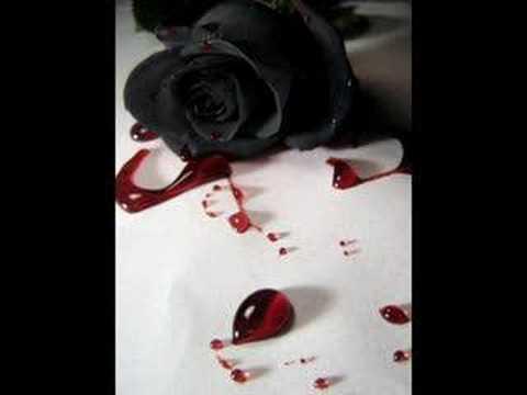 Inner Circle - Black Roses