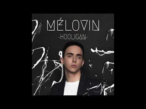 MELOVIN - Hooligan (Official Audio)