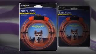 Reflective Pet Leash   Illuminated Pet Collars