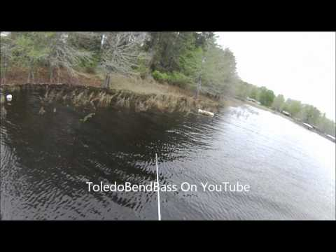 Spring Bass Fishing Toledo Bend Mar 20 2012