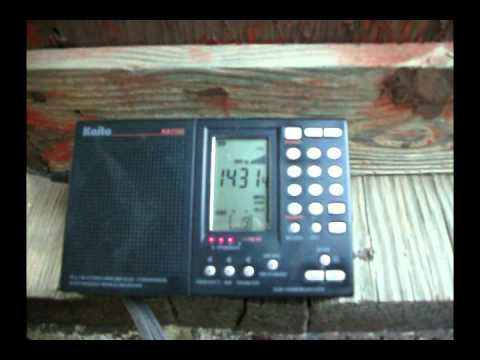 Ham radio: 20 meters, Psycho on the air