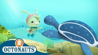 Octonauts - Deep Water Trouble | Cartoons for Kids | Underwater Sea Education
