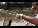 Pescaria de piaucus