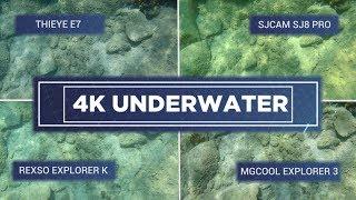 4K Action Cameras Underwater: SJCAM SJ8 Pro vs ThiEye E7 vs MGCool Explorer 3 vs Rexso Explorer 3