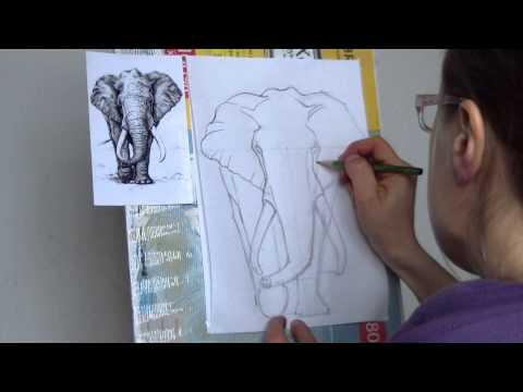 Видео как нарисовать слона карандашом поэтапно