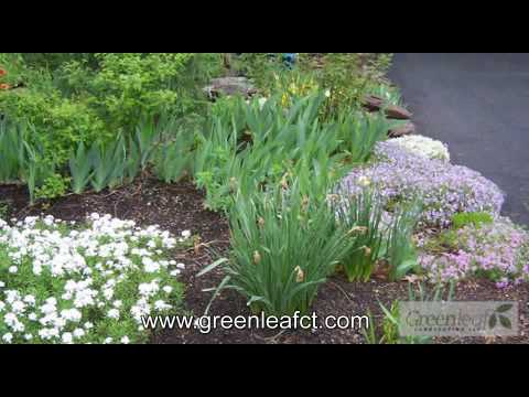 Landscaper in Haddam, CT - Green Leaf Landscaping