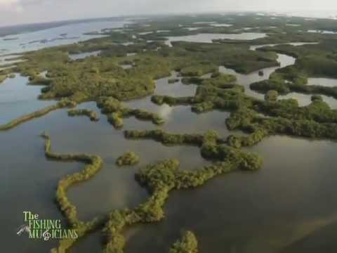 Florida Everglades Snook fishing with Kayaks