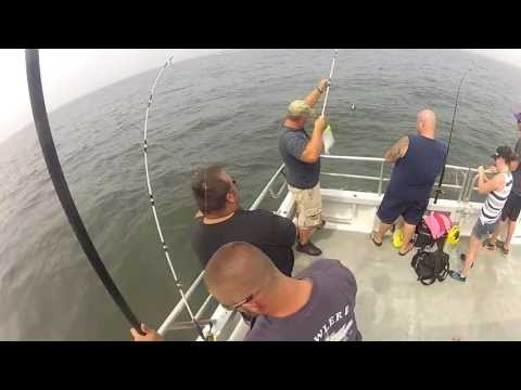 Fluke Fishing Sandy Hook NJ on the Prowler V