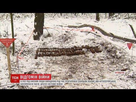 В лісі під Києвом знайшли майже 400 снарядів Другої світової війни