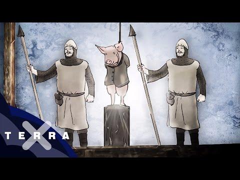 Mittelalter: Tiere vor Gericht
