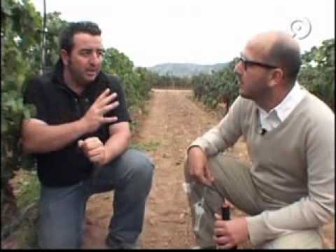 www.alforins.com - Bodegas Enrique Mendoza