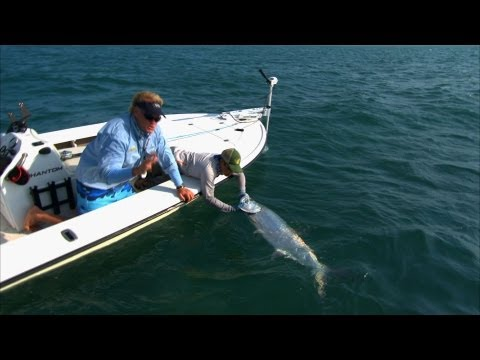 Addictive Fishing: Poontastic - FLY fishing for MONSTER tarpon