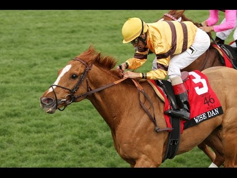 2014 Makers 46 Mile: Wise Dan is Back