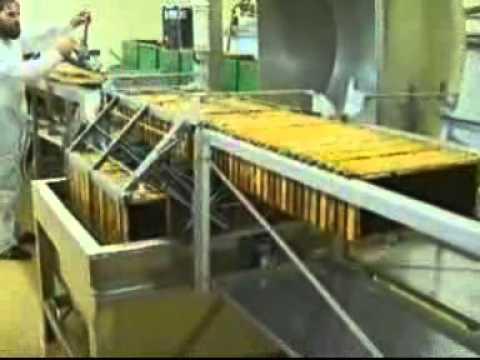 Automatic Uncapping and Honey Extraction Line - Αυτόματη Γραμμή Απολεπισμού και Τρύγου