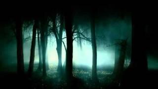 Watch Lake Of Tears The Greymen video