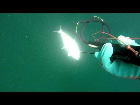 подводная оснастка