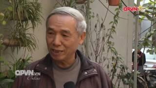 Bản tin đặc biệt Tết Đinh Dậu 2017 về Sen Trong Phố