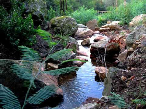 ALDEIA DE ORVALHO.wmv