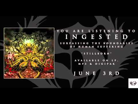 Ingested - Stillborn