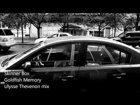 Skinner Box &quot; Goldfish Memory&quot; - Ulysse Thevenon Dark Mix