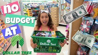 NO BUDGET SHOPPiNG CHALLENGE AT DOLLAR TREE!