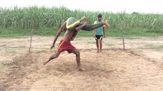 WWE Pakistan Brock lesnar vs roman reigns,Benbizztv