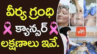 వీర్య గ్రంధి క్యాన్సర్ లక్షణాలు ఇవే..! | Symptoms of Prostate Cancer in Men |  YOYO TV Channel