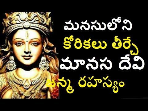 మనసు లోని కోరికలు తీర్చే మహిమాన్విత మానస దేవి రహస్యం  The Most Biggest Mysterious Temples Of India