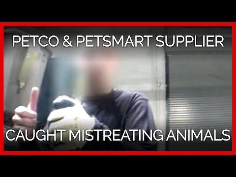 Another PETCO and PetSmart Supplier Caught on Video Mistreating Animals