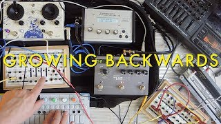 Growing Backwards | Tape Loop, OP1, Field Kit FX
