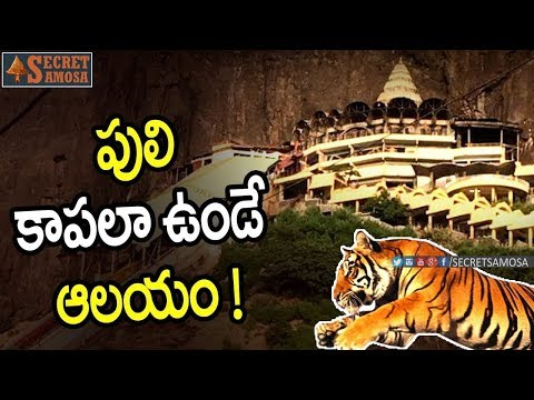 Devi Saptashrungi Temple History in Vani Gad Near Nasik | #UnkownFacts in Telugu | Secret Samosa