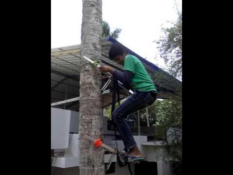KUTTICHAL COCONUT TREE CLAIMBER 1