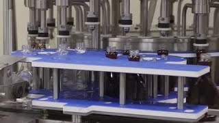 ERP System Implementation at Dominion Liquid Technologies
