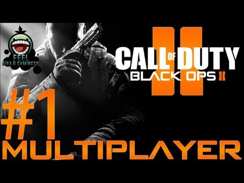 how to play call of duty 2 multiplayer lan