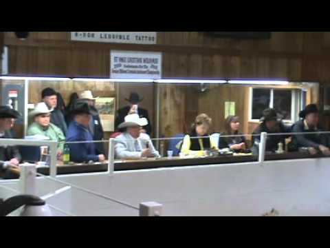 #41 Randy Searer Champion (2011 Greater Midwest Livestock Auction Competition)